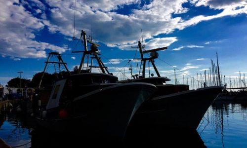 regata-130-miglia-pietas-julia_008